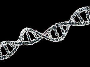 factores hereditarios cáncer colon