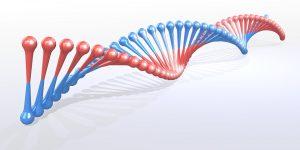 Factores de riesgo del cáncer de colon