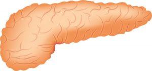 Tumores neuroendocrinos del páncreas